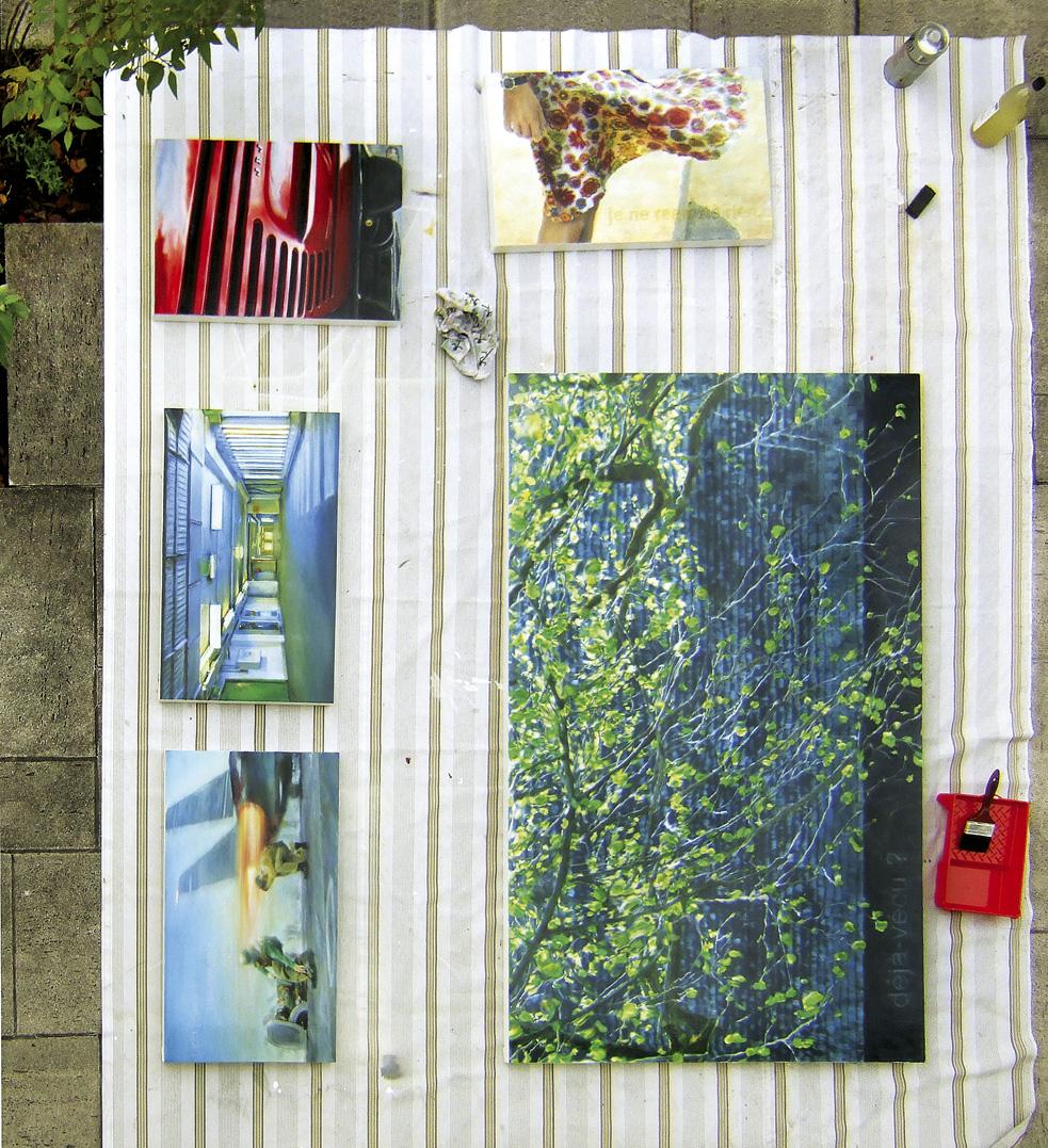 AIRBORN Firnis/varnish, Garten/garden Salzburg